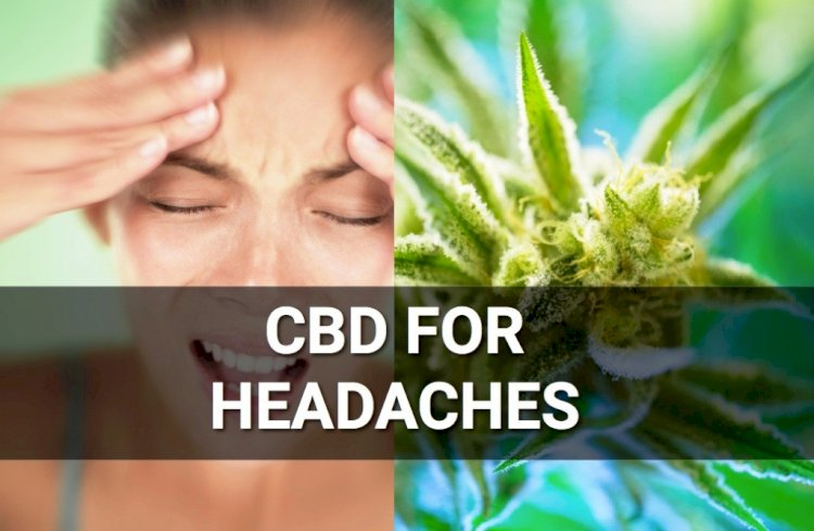 CBD Oil and Migraines